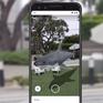 Thăm vườn bách thú 3D trong mùa dịch COVID-19 chỉ với Google Search