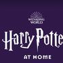 Ra mắt nền tảng giải trí Harry Potter phục vụ trong mùa cách ly