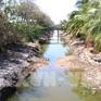 Đợt xâm nhập mặn mới tại Đồng bằng sông Cửu Long