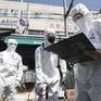Hàn Quốc điều tra khẩn hơn 50 bệnh nhân tái dương tính với virus SARS-CoV-2