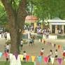 Hà Nội khẩn trương rà soát cây xanh trong trường học