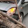 Hà Nội: Cây xanh bật gốc đè trúng ô tô đang chạy trên đường