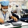 Lao động có việc làm giảm mạnh nhất trong vòng 10 năm qua