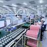 Đứt gẫy trong sản xuất và phân phối, doanh nghiệp xuất khẩu lao đao