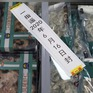 Trung Quốc phát hiện virus SARS-CoV-2 trên bao bì nhập khẩu