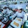 Kinh tế Việt Nam sẽ nhanh chóng khôi phục về mức trước khủng hoảng COVID-19