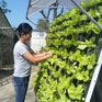 Những phụ nữ tiên phong trong thực hành sống xanh, biến rác thải thành tiền
