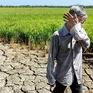 6 tháng đầu năm, thiên tai gây thiệt hại gần 3.400 tỷ đồng