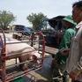 Lợn hơi tăng giá trở lại bất chấp lợn sống từ Thái Lan lại về