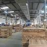"""Xuất khẩu gỗ """"lội ngược dòng"""", khôi phục đà tăng trưởng"""