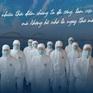 Hãy bảo vệ y bác sĩ để y bác sĩ bảo vệ chúng ta!