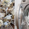 """Sợ virus Corona, cho toàn bộ tiền vào máy giặt để... """"rửa"""""""