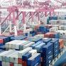 WTO dự báo thương mại toàn cầu giảm 13% trong năm nay