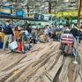 Đưa hơn 530 công dân Việt Nam từ Singapore và Đài Loan (Trung Quốc) về nước