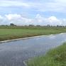 """Sông """"chết"""", đất ruộng bỏ hoang vì nước thải dệt nhuộm"""
