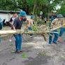 Thiệt hại do bão số 5: 2 người chết, 1 người mất tích, hơn 1.500 nhà tốc mái