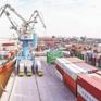 Ban hành Biểu thuế xuất nhập khẩu ưu đãi của Việt Nam để thực hiện EVFTA