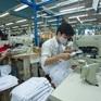 Gần 2 tháng có hiệu lực, EVFTA mang lại nhiều lợi ích cho doanh nghiệp