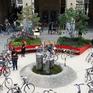 Sàn giao dịch xe đạp cũ tại Brussels có gì độc đáo?