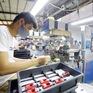 Fitch Solutions: Kinh tế Việt Nam đang trên đà phục hồi