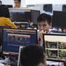 Nhà đầu tư F0 đổ xô mở tài khoản chứng khoán