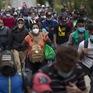 Đại dịch khiến số người di cư trên toàn cầu giảm khoảng 2 triệu trường hợp