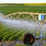 Chính phủ quyết định thành lập Khu nông nghiệp ứng dụng công nghệ cao Thái Nguyên