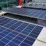 Tran lan tấm pin năng lượng mặt trời kém chất lượng