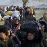 Triệt phá đường dây đưa người Syria vào Đức