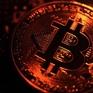 """Bitcoin và cổ phiếu công nghệ Mỹ là những """"bong bóng"""" lớn nhất trên thị trường"""