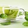 Trà xanh giúp nâng cao đề kháng, tăng cường sinh lực