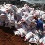 Tiêu hủy gần 25 tấn phân bón không rõ nguồn gốc xuất xứ