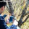 Sơn La cấp miễn phí 100.000 tem truy xuất nguồn gốc đào