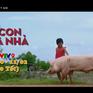 Điểm hẹn phim Tết trên kênh VTV9