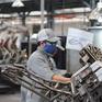 Việt Nam được đánh giá cao về phục hồi kinh tế