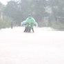 Từ chiều 18-19/10, khu vực từ phía Nam Nghệ An - Quảng Trị cục bộ có mưa to đến rất to