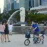 Singapore đón chuyến bay miễn cách ly đầu tiên từ Hà Lan