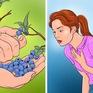 """6 thực phẩm """"bổ dưỡng"""" có thể trở nên """"độc hại"""" khi ăn quá nhiều"""