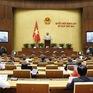 Sửa đổi, bổ sung Luật Sở hữu trí tuệ: Cần lưu ý tới các cam kết quốc tế