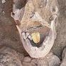 Kỳ dị, xác ướp 2000 tuổi có chiếc lưỡi bằng vàng