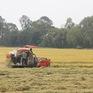Nông nghiệp thắng lớn