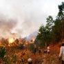 An Giang cảnh báo cháy rừng mức cực kỳ nguy hiểm