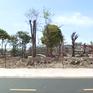 Vũng Tàu: Mạnh tay xử lý cán bộ bảo kê xây dựng trái phép