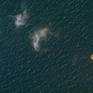 Tàu của Israel bị tấn công ở ngoài khơi bờ biển UAE