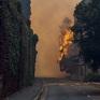 Nỗ lực dập tắt đám cháy rừng nghiêm trọng tại thành phố Cape Town, Nam Phi