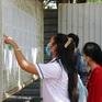 Một thí sinh đăng ký tới 80 nguyện vọng xét tuyển CĐ, ĐH năm 2021