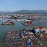 """Nhiều hộ nuôi cá """"mất ăn mất ngủ"""" vì lo nước cống rò rỉ làm ô nhiễm nguồn nước"""