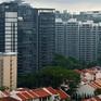 Tăng mạnh giao dịch nhà ở xã hội với giá triệu đô tại Singapore