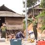 Sinh viên góp sức xây nhà cho đồng bào vùng cao