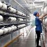 Ấn Độ không áp thuế chống bán phá giá một số sản phẩm xơ sợi staple nhân tạo Việt Nam
